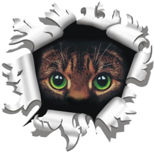Kat (ogen) sticker 17x90