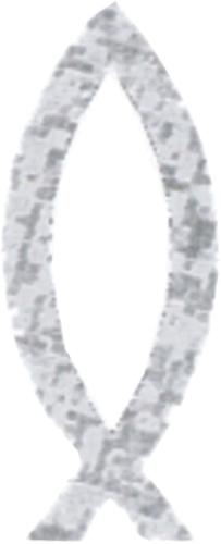 Vis zilver sticker