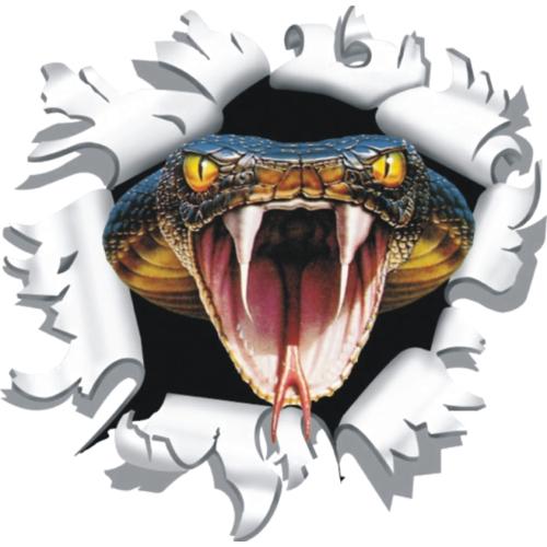 Kogelgat slang kop sticker 17x17