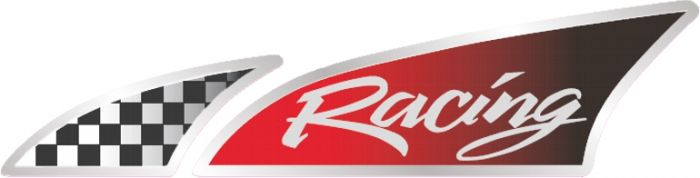 Race-vlag-links-sticker