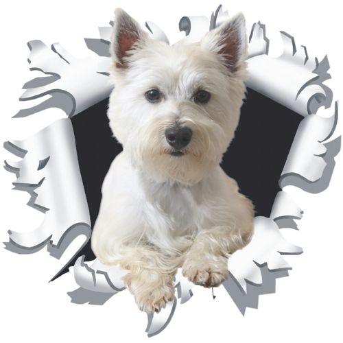 Hondje-uit-kogelgat-sticker-17x90