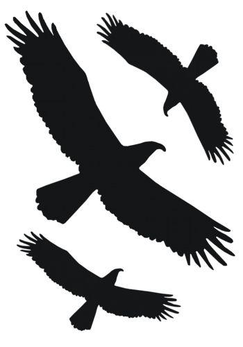 Vogelset-raamsticker
