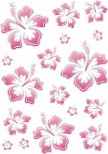Hibiscus-roze-sticker-20x30