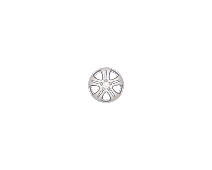 Dakota Silver - 14 inch wieldoppen set