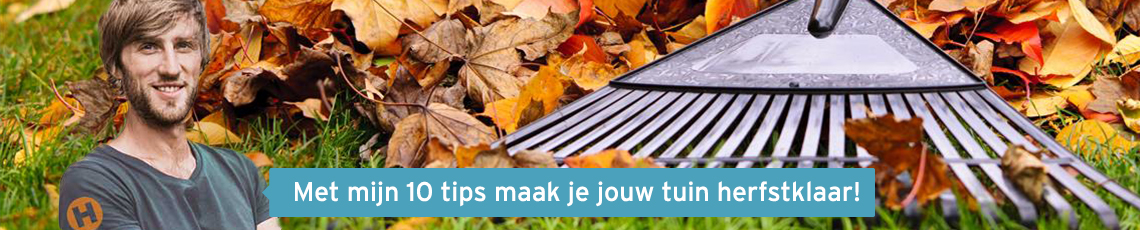 Tuintips herfst